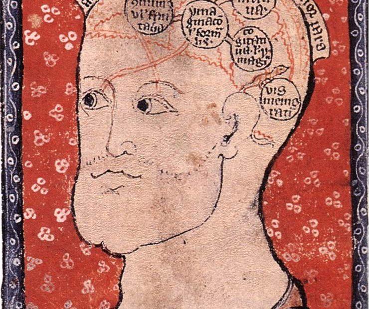medieval brain