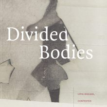 Divided Bodies